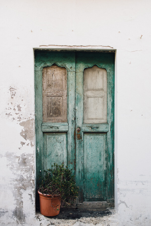 An old green door with a pot plant in front.