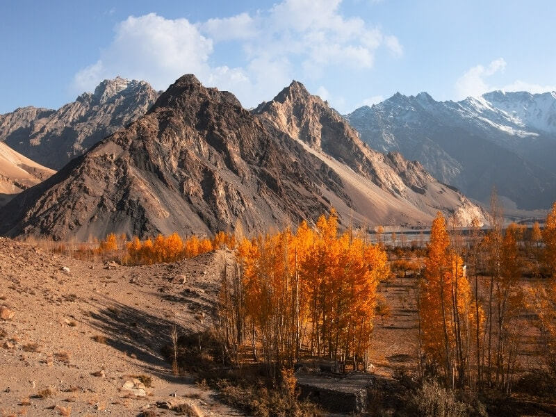 The jagged peaks of a mountain range in Pakistan framed by trees in fall colours.